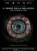 IL SENSO DELLA BELLEZZA - ARTE E SCIENZA AL CERN