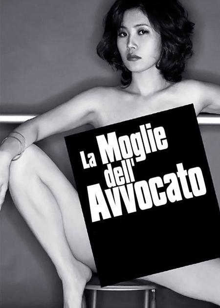 LA MOGLIE DELL'AVVOCATO (A GOOD LAWYER'S WIFE)